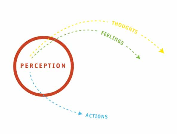 The O'Meara Process | The Power of Perception